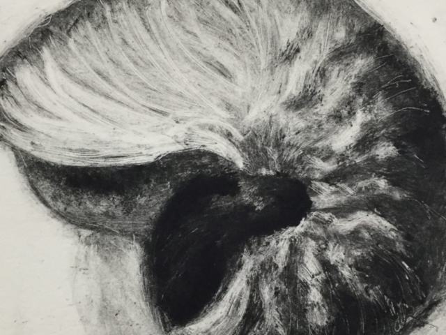 """Shell""  monotype"